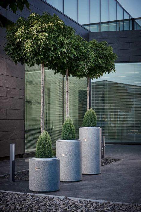 Design Vase Cylindrus in verschiedenen Größen mit Bepflanzung